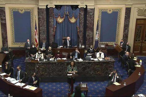 A congressional aid addresses the U.S. Senate. Photo courtesy of The Guardian.