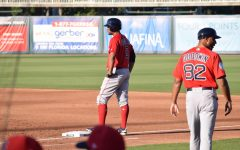 2019 Red Sox Spring Training in Pictures