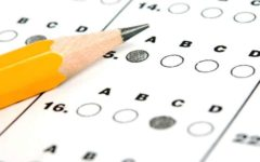 The (Un)Importance of Standardized Testing